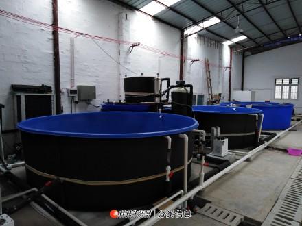 全自动水循环养殖系统