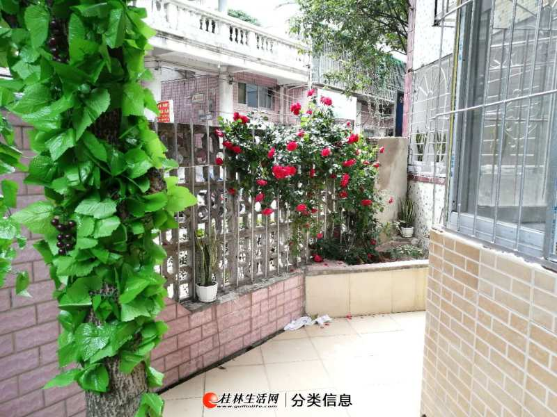 七星区 桂花园小区 新装修 有院子 65平米 49万