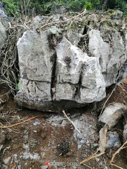 各类形态景观石(白岩石)