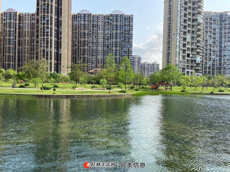 T市政府西城大道300亩湖景小区麓湖国际3房2厅97平50万