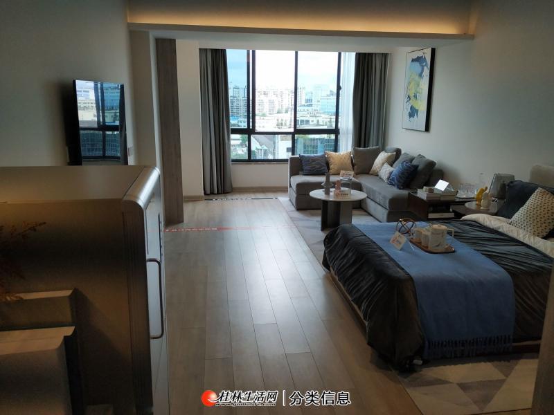 棠棣之华 精装公寓 1房1厅 明年交房 只要28万
