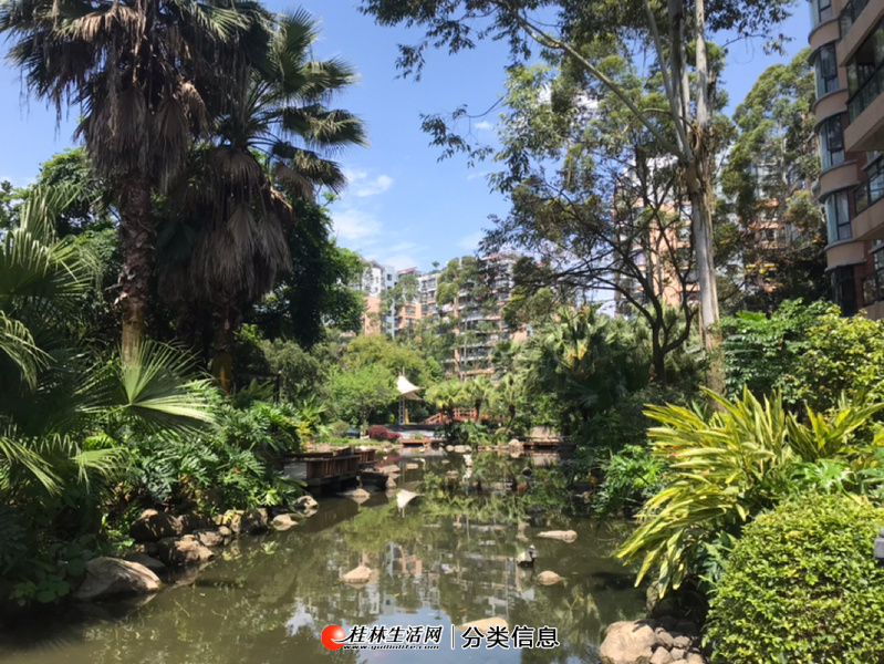 七星区 花鸟市场对面 高端小区 澳洲假日 二楼宜居两房