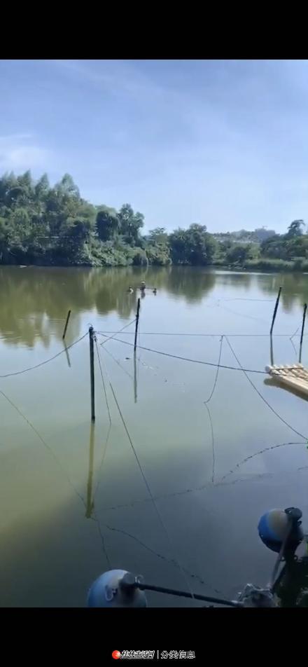 灵川灵勃路口附件40亩鱼塘及10亩养鸭场地转让