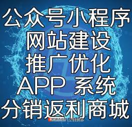 桂林网站定制化建设,模板搭建。公众号商城小程序手机APP开发