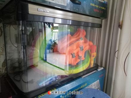鱼缸150处理限铁西自提