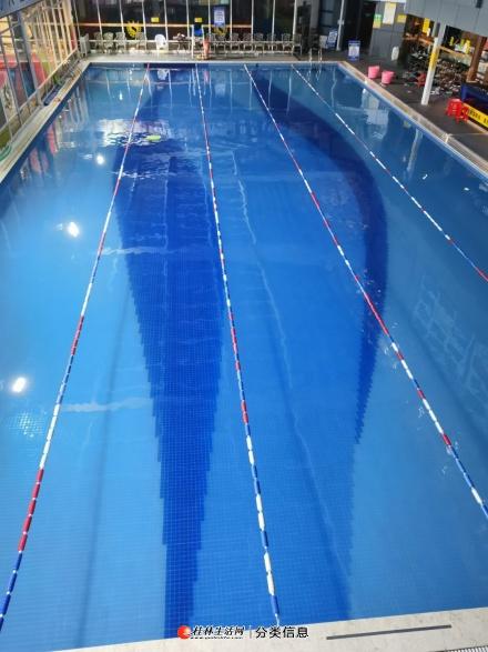益华城杰士美游泳培训开班了
